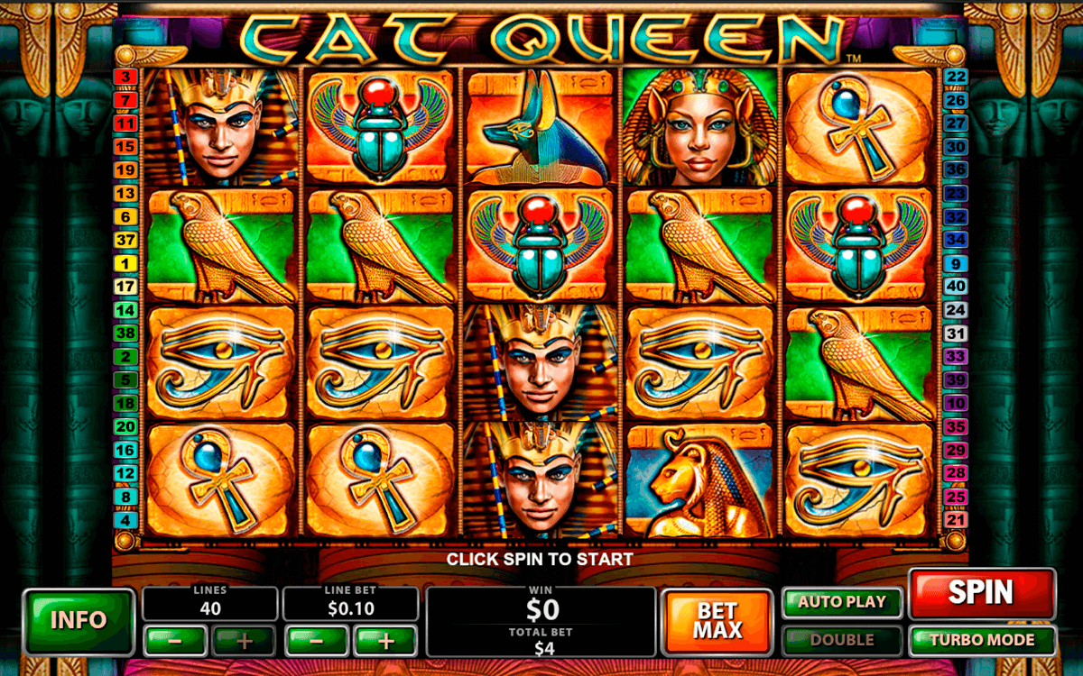 cat queen playtech jogo casino online