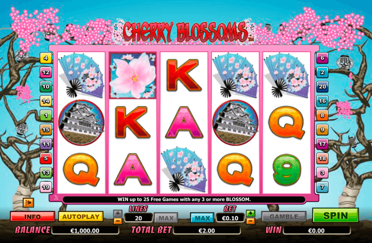 cherry blossoms nextgen gaming jogo casino online