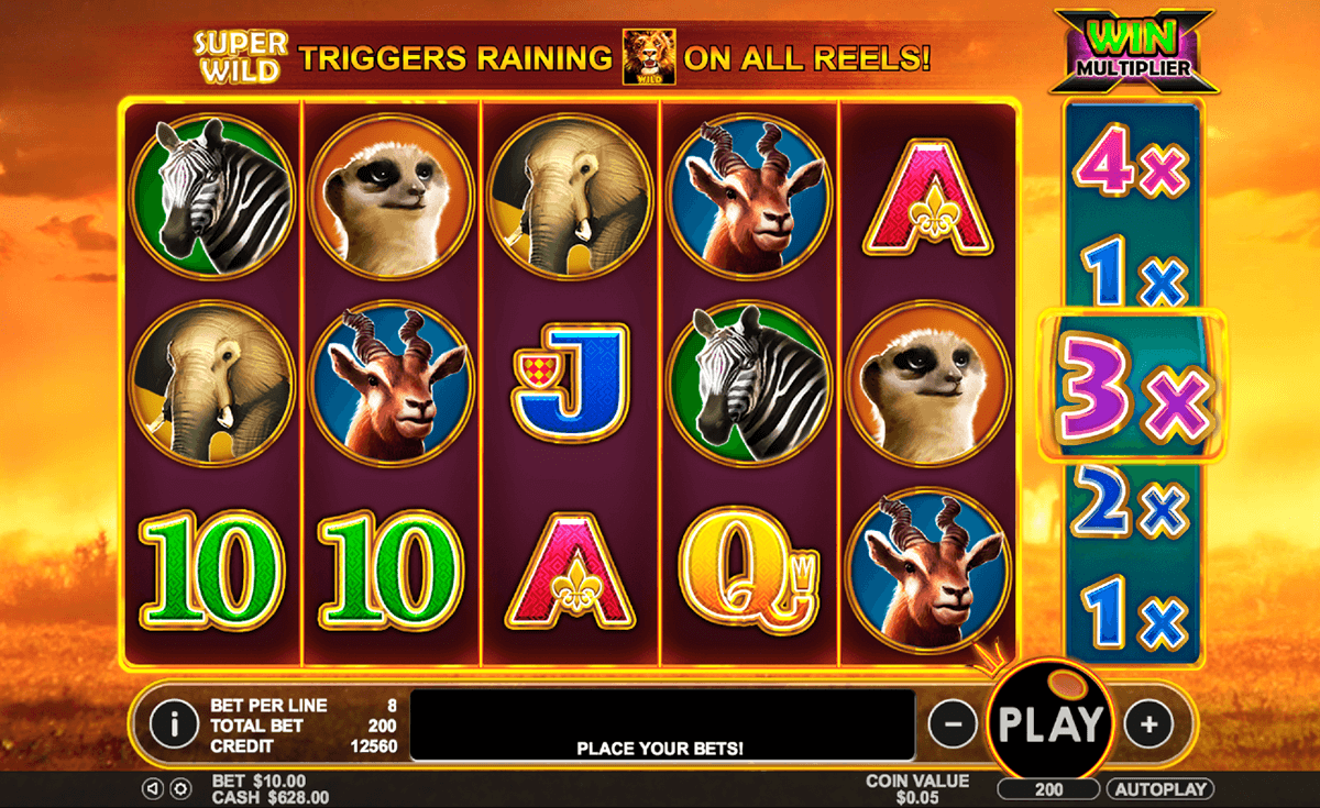 hot safari pragmatic jogo casino online