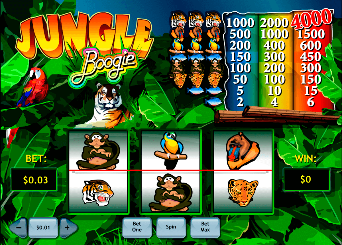 jungle boogie playtech jogo casino online