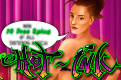 logo hot ink microgaming caça niquel