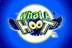 logo what a hoot microgaming caça niquel