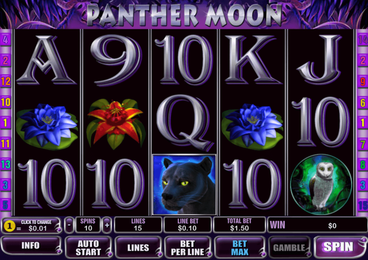 panther moon playtech jogo casino online