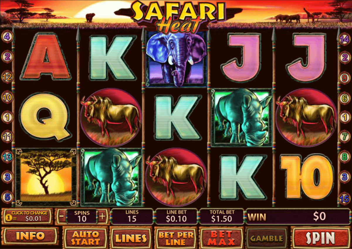 safari heat playtech jogo casino online
