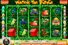 watch the birdie rival jogo casino online