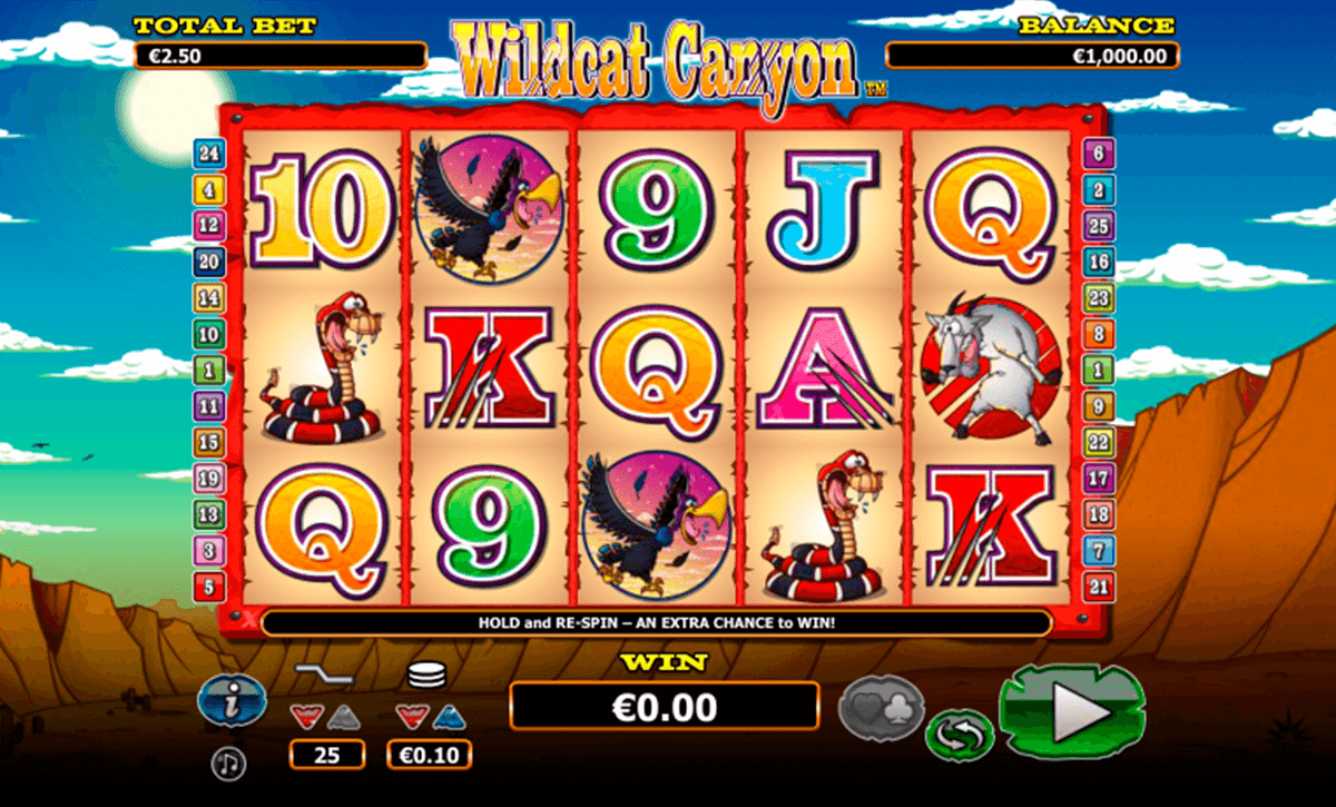 wild cat canyon nextgen gaming jogo casino online