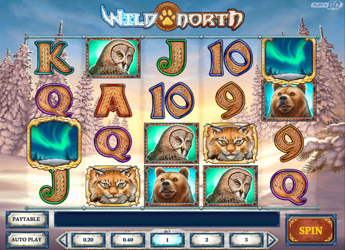 wild north playn go jogo casino online
